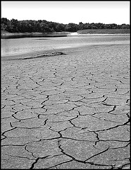 drought-along