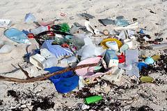 Beach Garbage 1