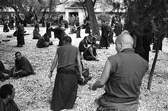 Monk Debate 13