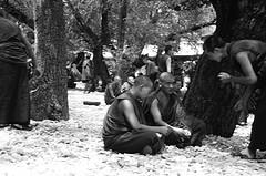 Monk Debate 8