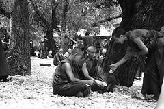 Monk Debate 9