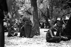 Monk Debate
